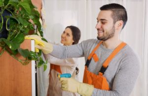 professionelles Reinigungsunternehmen