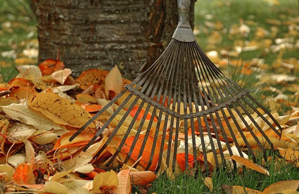 Gehweg von Herbstlaub befreien!